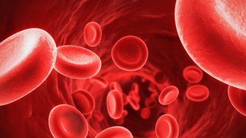 Что такое гемофилия? Признаки и симптомы