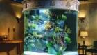 Фото аквариума в интерьере