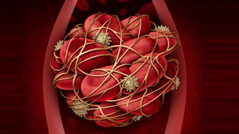 Препараты для лечения аллергии могут предотвратить образование тромбов