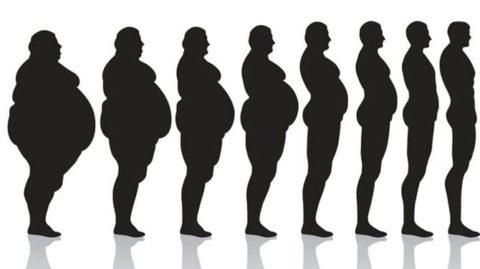 Перерывы в диете помогают похудеть, говорят ученные