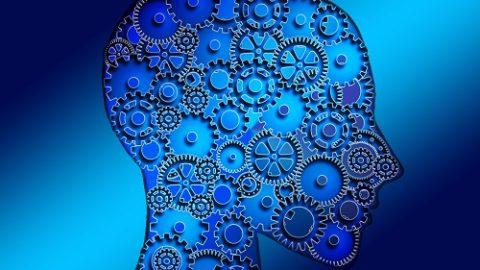 Тест: узнайте ваш тип мышления