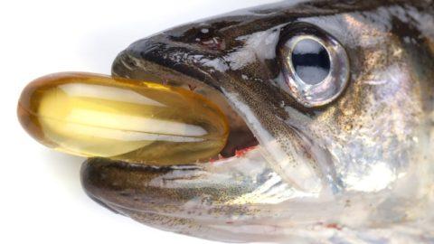 Лечение артрита рыбьим жиром