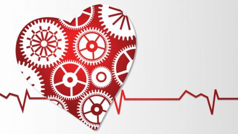 15 полезных веществ, которые предотвратят проблемы с сердцем