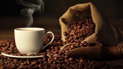 Кофеин может продлить жизнь при заболеваниях почек