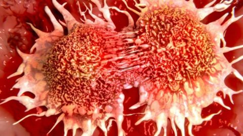 Кислород препятствует росту раковых клеток