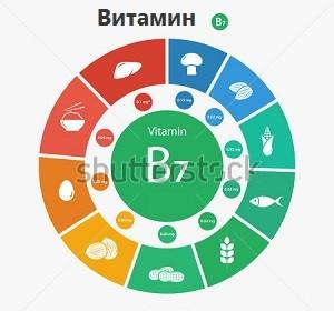 Витамин B7