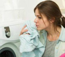 Плесень в стиральной машине: как избавиться от нее и удалить запах