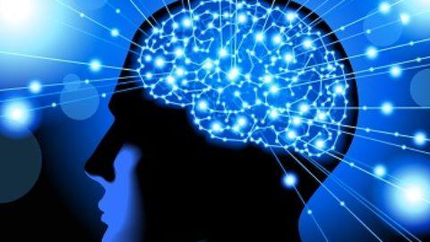 Тест: узнайте ваш тип интеллекта