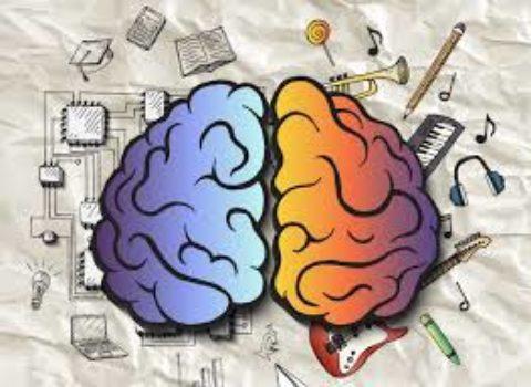 Тест: определите ваш тип интеллекта