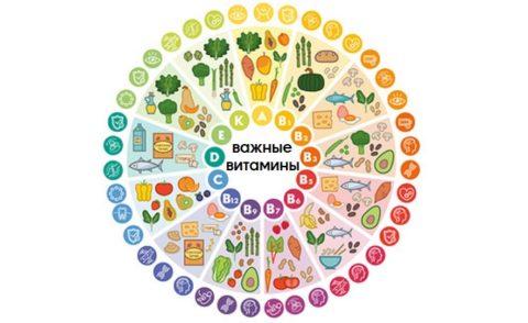 Важнейшие витамины для организма