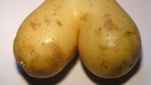 Картофель при геморрое: рецепты, свечи, клизмы, отзывы