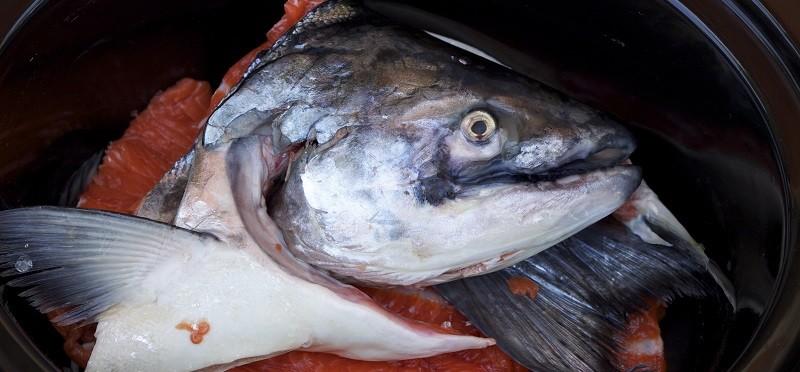 Красная рыба для ухи